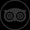 icons8-tripadvisor-filled-100 (1)